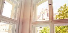 Mietminderung – Was tun, wenn es in der Wohnung schimmelt?